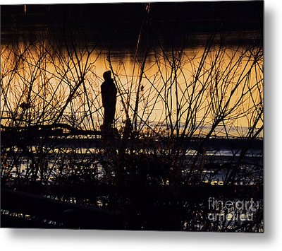 Metal Print featuring the photograph A New Day by Robyn King