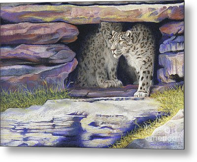 A New Day - Snow Leopards Metal Print by Tracy L Teeter