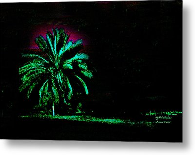 A Night Personality Metal Print by Itzhak Richter