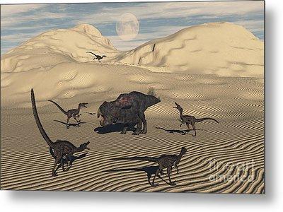 A Pack Of Velociraptors Encircling Metal Print