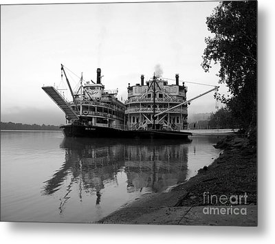 A Pair Of Queens Bw Metal Print by Mel Steinhauer
