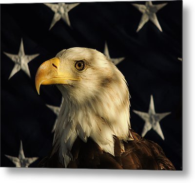 A Patriot Metal Print by Raymond Salani III