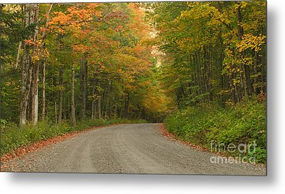 A Peaceful Road Metal Print by Charles Kozierok