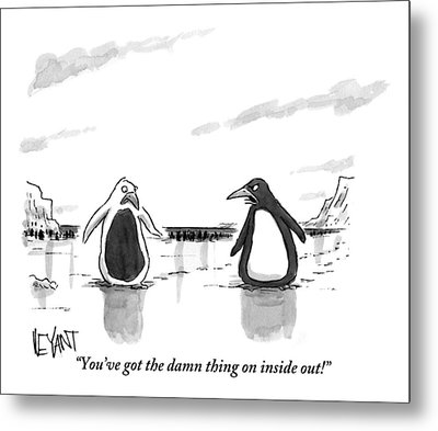 A Penguin Is Seen Talking To Another Penguin Metal Print