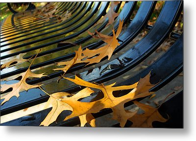 A Place To Fall Metal Print by Ellen Tully
