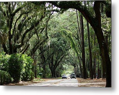 A Pretty Tree Covered Road Somewhere On Hilton Head Island Metal Print