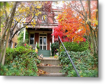 A Purrrrfect Autumn Day Metal Print