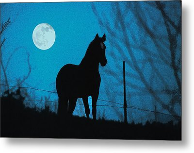 A Question Of Freedom Metal Print