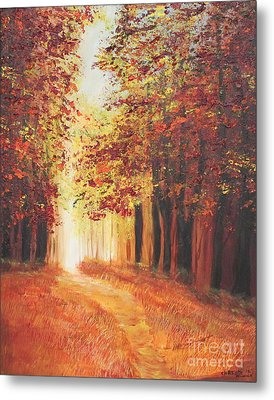 A Quite Walk Metal Print