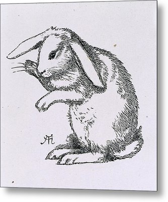 A Rabbit Metal Print by British Library