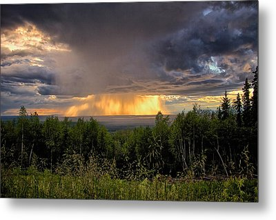 Metal Print featuring the photograph A Rainy Night In Minto  by Michael Rogers