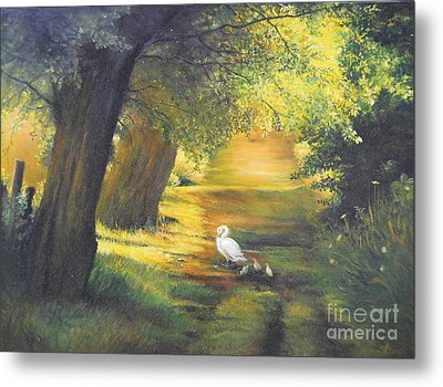 A Ray Of Sunshine  Metal Print by Sorin Apostolescu