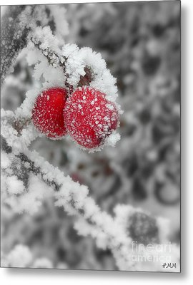 A Red Pair  Metal Print by Heidi Manly