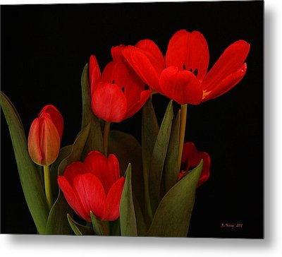 A Red Tulip Day Metal Print