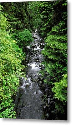 A River Runs Through It Metal Print by Russ Bishop