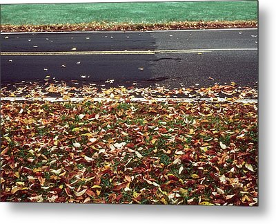 Road In Autumn Metal Print by Kellice Swaggerty