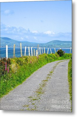 A Road To Waterville Metal Print by Suzanne Oesterling