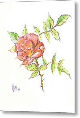 A Rose In Brigadoon Metal Print by Kip DeVore
