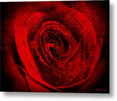A Rose Metal Print by Kylie Sabra