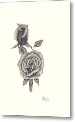 Metal Print featuring the drawing A Roses Beauty by Patricia Hiltz