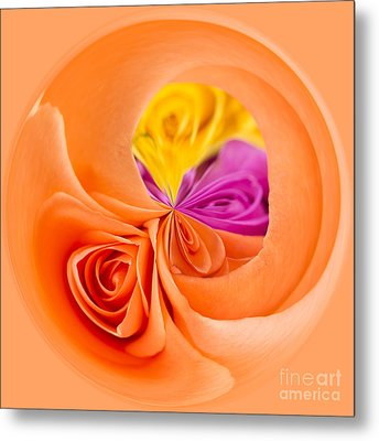 A Round Of Roses Metal Print by Anne Gilbert