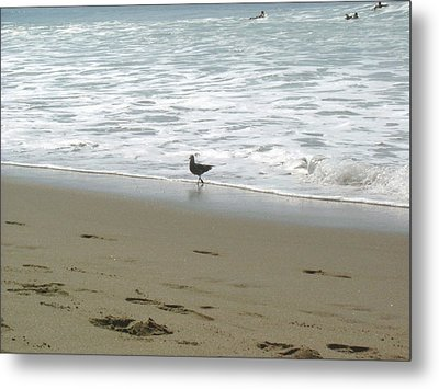 Metal Print featuring the pyrography A Seagull Playing With Waves by Hiroko Sakai