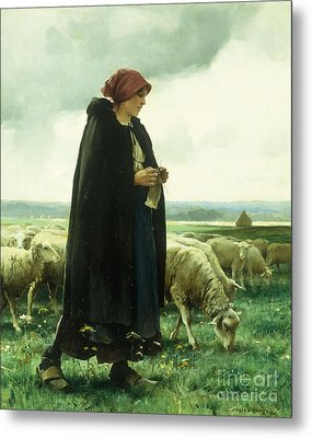 A Shepherdess With Her Flock Metal Print by Julien Dupre