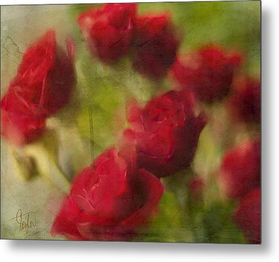A Shower Of Roses Metal Print by Colleen Taylor