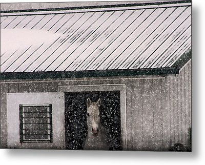 A Snowfall At The Stable Metal Print by Bruce Patrick Smith