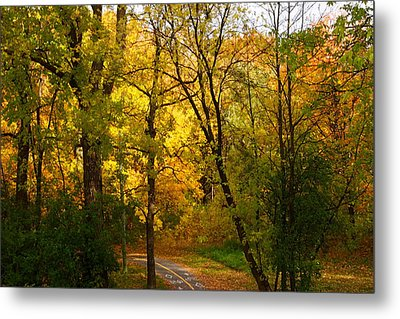 A Special Road Metal Print by Jocelyne Choquette