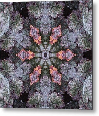 A Spider Web On Coral Bells Metal Print by Trina Stephenson
