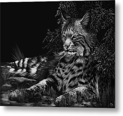 A Spot Of Shade Metal Print by Heather Ward