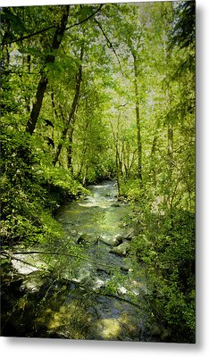 A Spring Day At Lithia Creek Metal Print by Diane Schuster