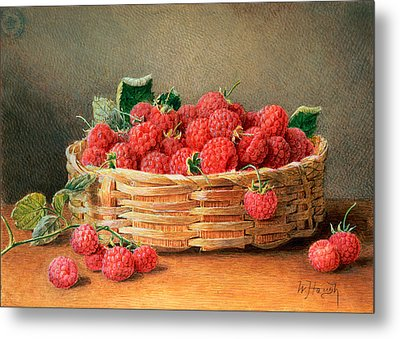 A Still Life Of Raspberries In A Wicker Basket  Metal Print by William B Hough
