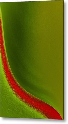 Stroke Of Red Metal Print by Kellice Swaggerty