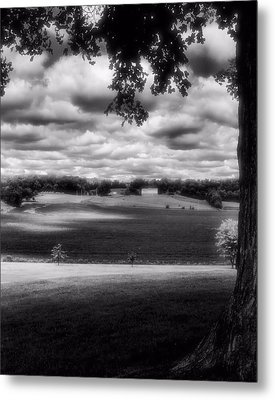 A Summer's Day Metal Print