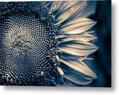 A Sunflower Dream Metal Print by Isabel Laurent