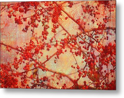 A Tangle Of Fruited Branches Metal Print by Suzanne Powers