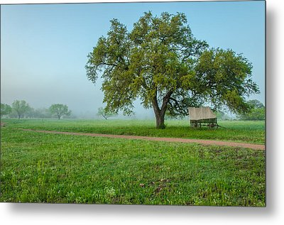 A Texas Morning Metal Print by Jeffrey W Spencer