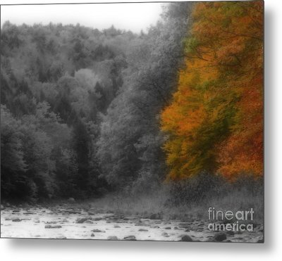 A Touch Of Autumn Colors Metal Print by Smilin Eyes  Treasures