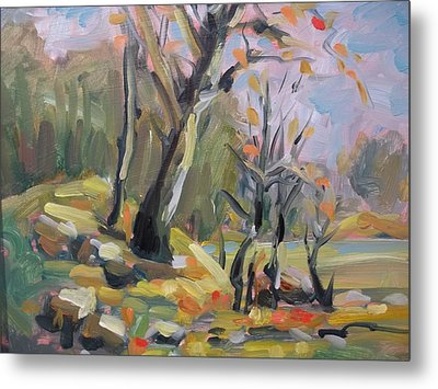A Touch Of Fall Metal Print by Robert Martin