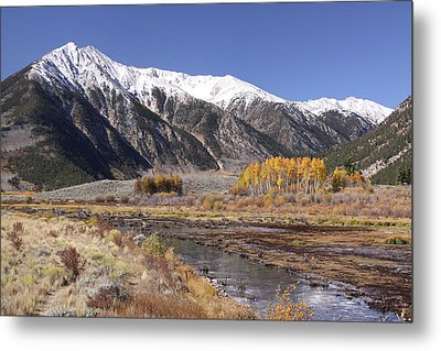 Metal Print featuring the photograph A Touch Of Gold by Harold Rau