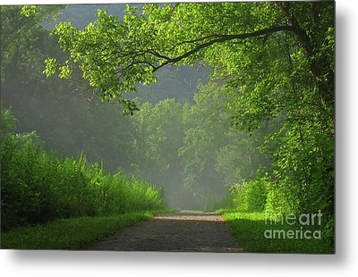 A Touch Of Green II Metal Print by Douglas Stucky