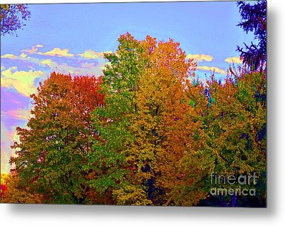 Metal Print featuring the photograph A Touch Of Neon by Judy Wolinsky