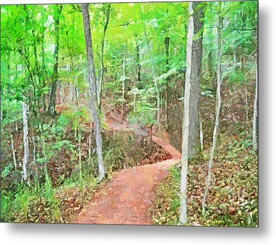 A Trail Through The Woods Metal Print
