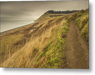 A Trail's Beginning Metal Print by Calazone's Flics