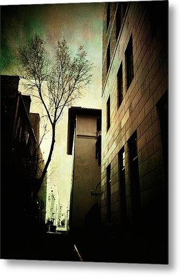 A Tree Grows In Albuquerque Metal Print by Mark David Gerson