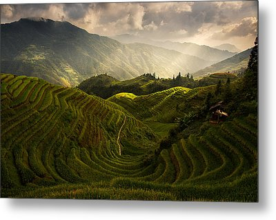 A Tuscan Feel In China Metal Print by Max Witjes
