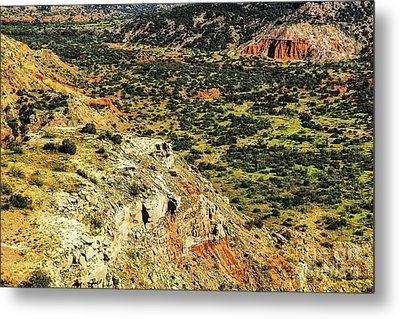 A View From Above Metal Print by Nancy Marie Ricketts