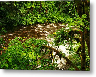 A View Of Eagle Creek Metal Print by Jeff Swan